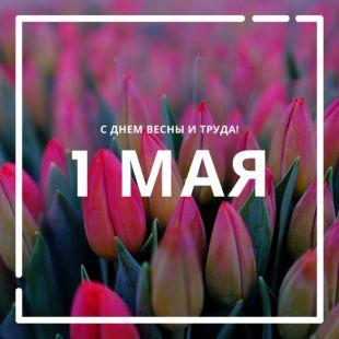 С Праздником Весны и Труда!>